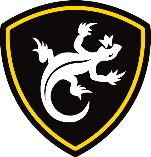 правило, вв россии логотип каждом