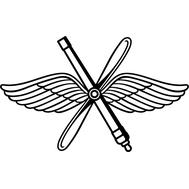 Наклейка ВВС, фото 1
