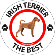 Наклейка Irish terrier the best, фото 1