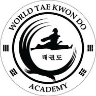 Наклейка Tae Kwon Do Academy, фото 1