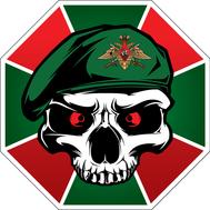 Наклейка Флаг с Черепом, фото 1