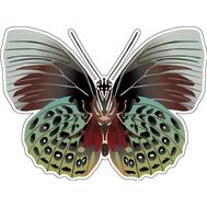 Наклейка Мотылек, фото 1