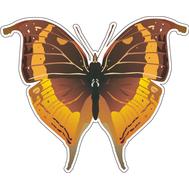 Наклейка Бабочка коричневая с оранжевым, фото 1