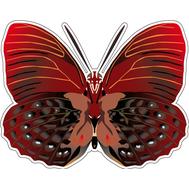 Наклейка Бабочка бордовая, фото 1