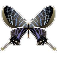 Наклейка Бабочка сине-серая, фото 1