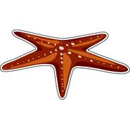 Наклейка Морская звезда, фото 1