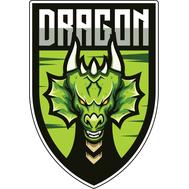 Наклейка Зеленый Дракон на щите, фото 1