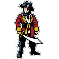 Наклейка Пират с мечом, фото 1