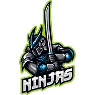 Наклейка Ninjas, фото 1