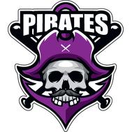 Наклейка Pirates, фото 1