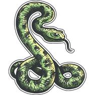 Наклейка Зеленая змея, фото 1