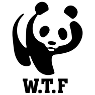 Наклейка W.T.F., фото 1