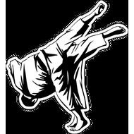 Наклейка Борцы, фото 1