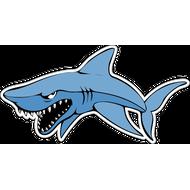 Наклейка Акула-006, фото 1