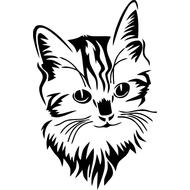 Наклейка Котик, фото 1