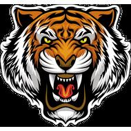 Наклейка Тигр-02, фото 1