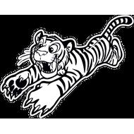 Наклейка Тигр-019, фото 1