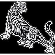 Наклейка Тигр-020, фото 1