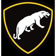 Наклейка Отдельная Дивизия Особого Назначения ВВ МВД, фото 1