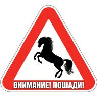 Наклейка Внимание Лошади!, фото 1