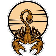 Наклейка Скорпион-009, фото 1
