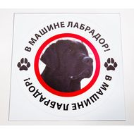Наклейка В машине лабрадор, фото 1