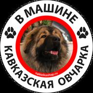 Наклейка В машине кавказская овчарка, фото 1