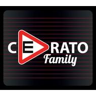 Наклейка Шипы Cerato family, фото 1