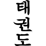 Наклейка  Taekwon-do иероглифы, фото 1