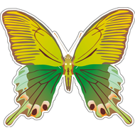 Наклейка Бабочка желтая с зеленым, фото 1