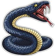 Наклейка Змеиный оскал-008, фото 1