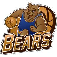 Наклейка Bears, фото 1