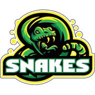 Наклейка Гремучая змея-054, фото 1