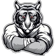 Наклейка Тигр-027, фото 1