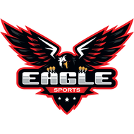 Наклейка Eagle sport, фото 1