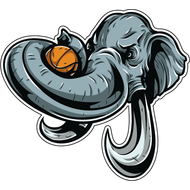 Наклейка Слон и баскетбольный мяч, фото 1