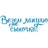 Наклейка Везем лапулю сыночка!, фото 1
