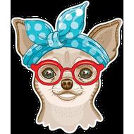Наклейка Чихуа в очках, фото 1