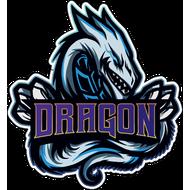 Наклейка Дракон-105, фото 1
