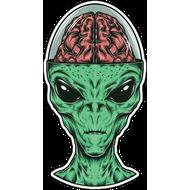 Наклейка Мозг пришельца, фото 1