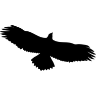 Наклейка Орел-089, фото 1
