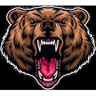 Наклейка Медведь-123, фото 1
