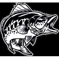 Наклейка Рыба-032, фото 1