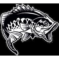 Наклейка Рыба-034, фото 1