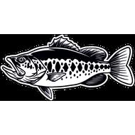 Наклейка Рыба-036, фото 1