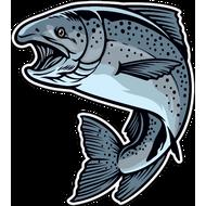 Наклейка Рыба-045, фото 1