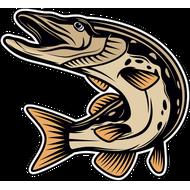 Наклейка Рыба-049, фото 1