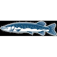 Наклейка Рыба-051, фото 1