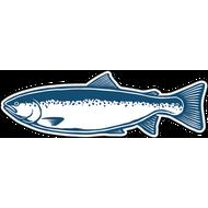 Наклейка Рыба-054, фото 1