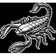 Наклейка Скорпион-013, фото 1